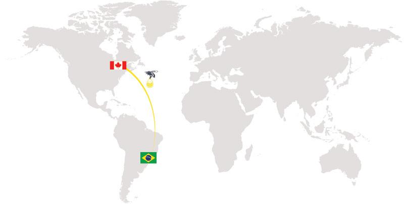 樂蜂牌巴西綠蜂膠原材料來自巴西